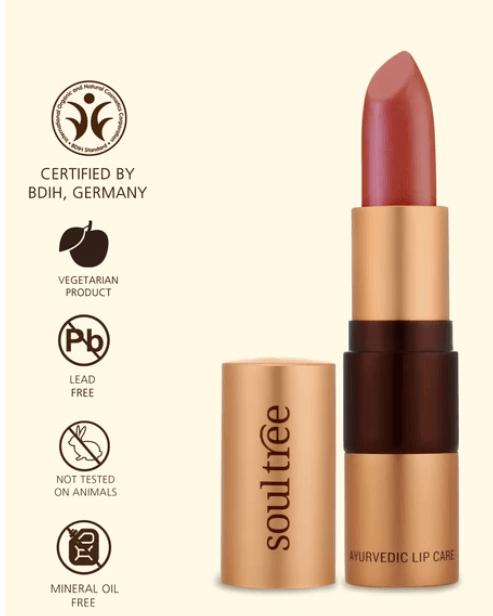 soultree lipstick organic makeup brands